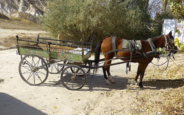 Goranboyda at arabasını maşın vurdu