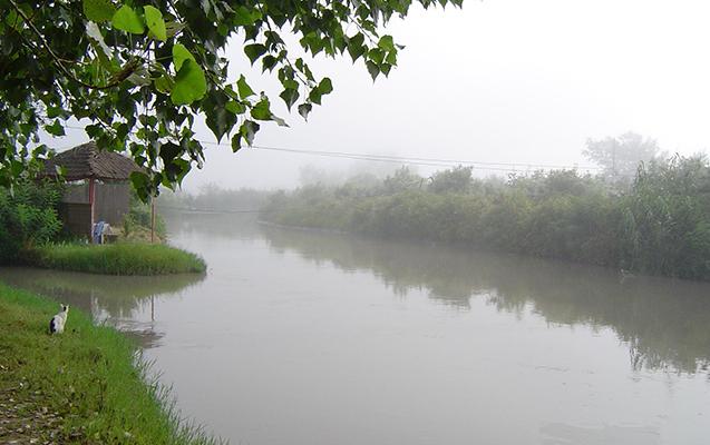 Yağışların yağması çaylarda sululuğun artmasına səbəb olub