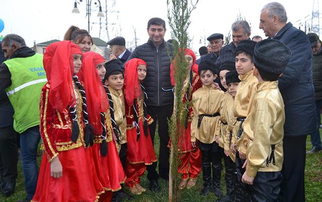 Yasamalda da 3700 ağac əkilib