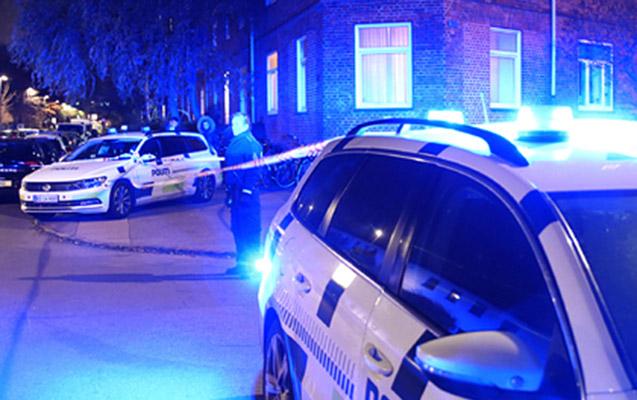 Danimarkada terrora hazırlaşan 20 nəfər tutuldu
