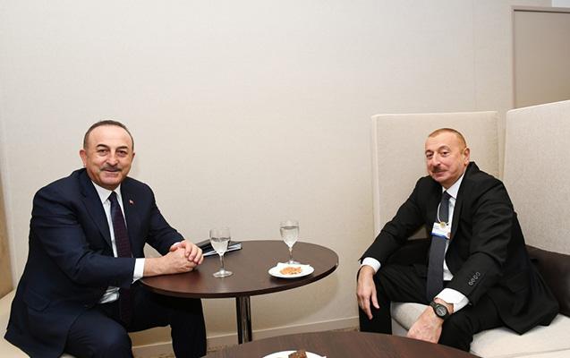 Prezident Davosda Çavuşoğlu ilə görüşdü