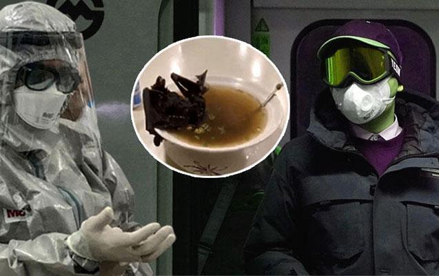 Koronavirus nədən yayılıb?