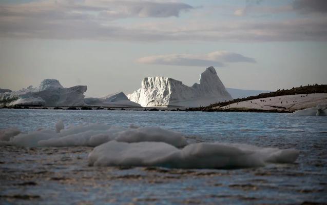 Antarktidada yeni temperatur rekordu