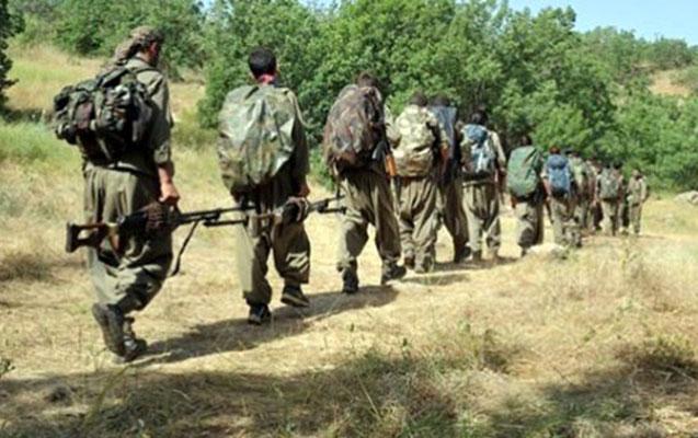 Türkiyə ordusu 7 PKK-lını zərərsizləşdirdi