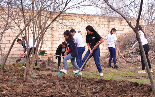 Şirvanlı könüllülər bir qocanı sevindirdi - Fotolar
