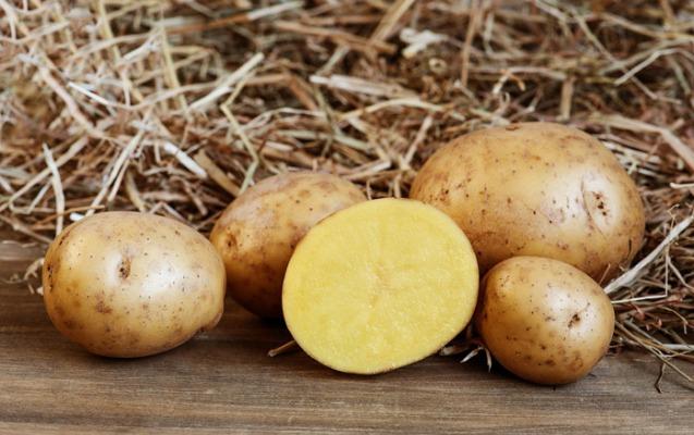 Çiy kartofun hansı faydaları var?