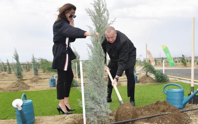 Prezidentlə xanımı Suraxanıda ağac əkdi