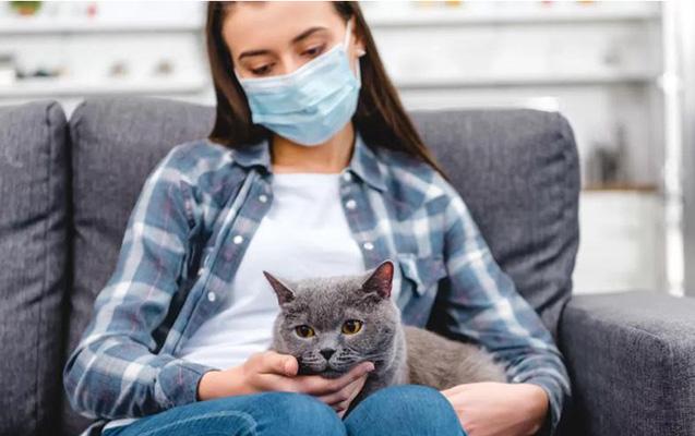 Dünyada koronavirusa yoluxanların sayı 6 milyona çatır