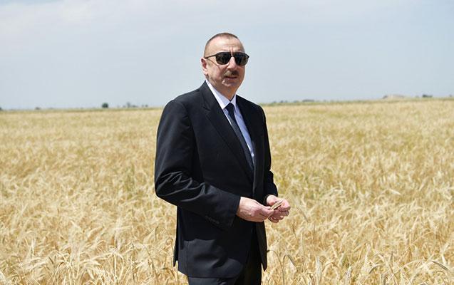 """""""Keçən il rekord səviyyədə məhsuldarlığı təmin etmişik"""""""