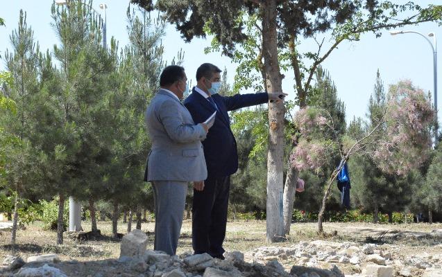 Şirvan şəhər Parkında əsaslı təmir işləri davam etdirilir