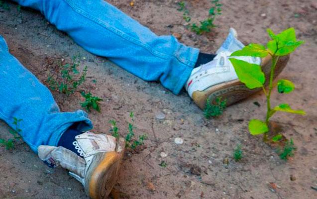 Sumqayıtda kişi zorakılıqla öldürüldü