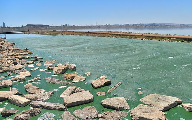 """""""""""Sobsan""""nın tullantı suları birbaşa Böyükşor gölünə tökülür"""""""