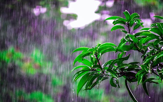 Sabah bəzi rayonlarda intensiv yağış yağacaq, dolu düşəcək