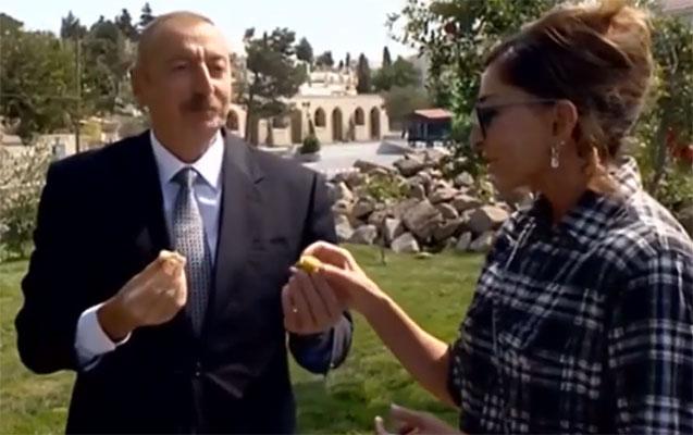 Prezidentlə xanımı Balaxanını gəzdi