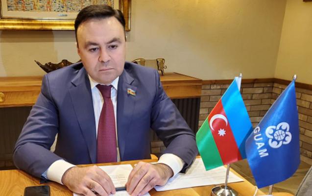 Elnur Allahverdiyev GUAM PA komitələri videokonfransında çıxış edib