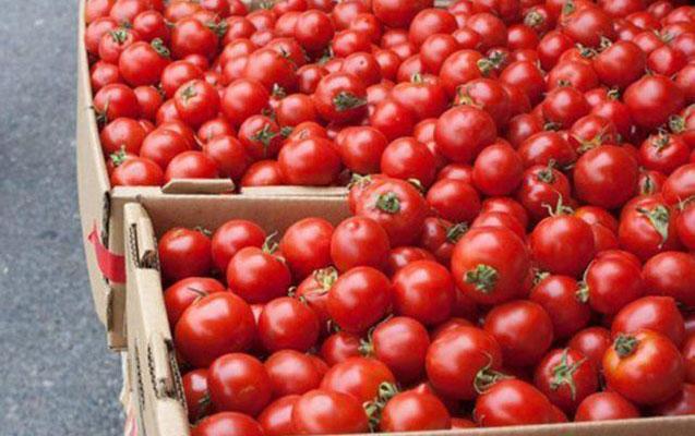 Azərbaycan pomidoruna qadağa qoyulmayıb