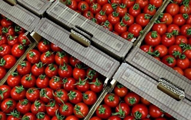 Daha 30 müəssisədən pomidor idxalına icazə verildi