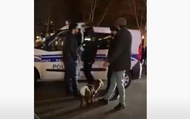 Bakıda quzuya uşaq bezi taxıb gəzdirdilər, polis saxladı - Video