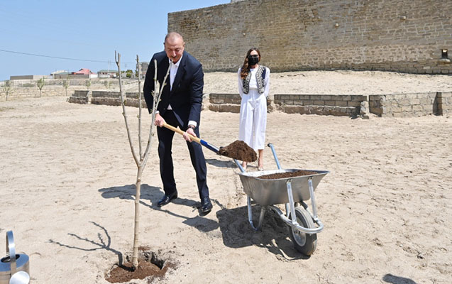 Prezident xanımı ilə Pirşağıda ağac əkib