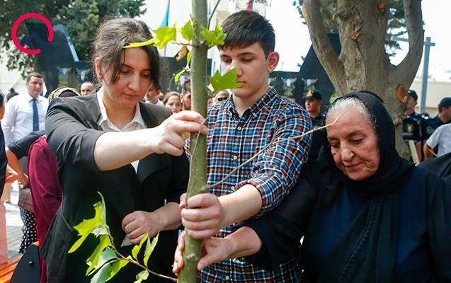 """""""Ona qismət olmadı, amma oğlu çinar ağacı əkdi"""""""
