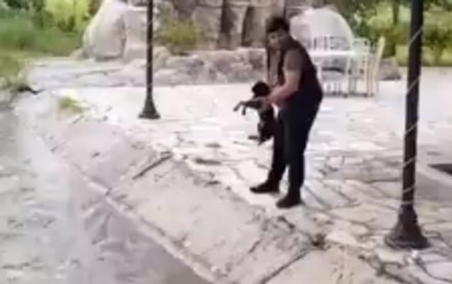 İti su kanalına atan şəxs cəzalandırıldı