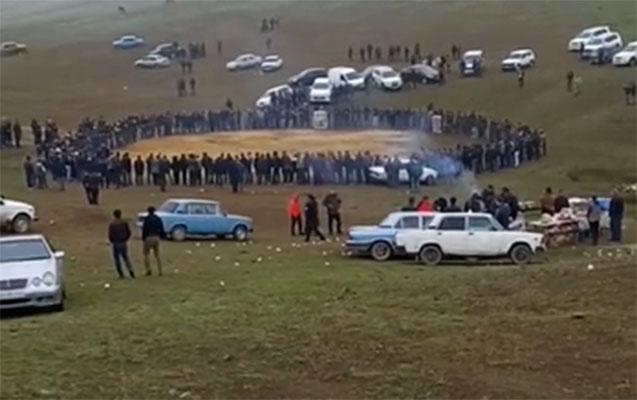 İt yarışlarının keçirilməsi ilə bağlı məsələ nəzarətə götürüldü - Video