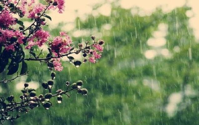 Sabah rayonlara yağış yağacaq