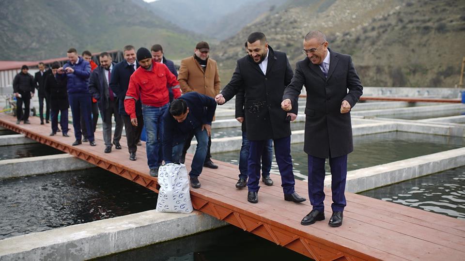 Alimpaşa Məmmədovun oğluna qurduğu biznes şəbəkəsi...
