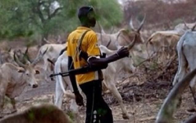 Nigeriyada çobanlar və fermerlər arasında atışma